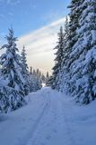 Winter forest in the Ural Mountains, Russia, Chelyabinsk region, Minyar. Pushkin`s fairy tale. Sunny winter day in the Ural Mountains, Russia Chelyabinsk region Royalty Free Stock Photography