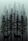 Winter forest, vector. Foggy winter forest with deer, birds and fir trees, vector illustration Royalty Free Stock Photo