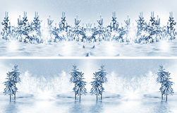 Winter forest. Winter landscape. Stock Photo