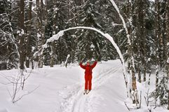Winter forest. Woman skier smiling with hands up. Winter forest. Snow, Trees, Piste. Woman skier smiling with hands up Stock Photos
