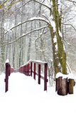 Winter forest and wooden bridge Stock Photos
