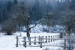Winter forest wooden fence. Rural nature season scene: wooden fence in winter forest covered by snow Royalty Free Stock Photo
