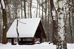 Winter forest and wooden house Royalty Free Stock Photography