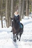 A winter forest. A young blonde woman riding a black horse on snowy ground stock photo