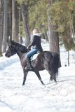 A winter forest. A young blonde woman riding a horse royalty free stock photo
