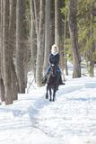 A winter forest. A young blonde woman in warm jacket riding a black horse on snowy ground royalty free stock photo