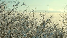 Winter in the forested mountain area of the Polish-Czech border. Royalty Free Stock Images