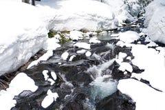 Winter-Frühlingsschmelze Stockbild