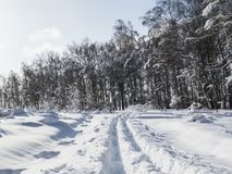 Winter fragmentary landscape. NA lot of snow and light. Freezing day.nlandscape in a frosty day with snow Royalty Free Stock Image