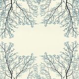 Winter frame background with snow covered tree branches,texture Stock Photos