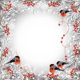 Winter frame with bullfinches stock illustration