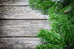 Winter frame with Christmas fir tree branches Stock Photos