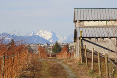 Winter in the Fraser Valley Royalty Free Stock Photography