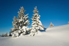 Winter in French alps royalty free stock photos