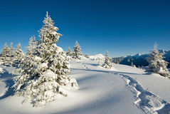 Winter in French alps Royalty Free Stock Photo