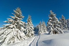 Winter in French alps Stock Image