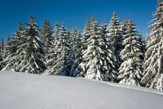 Winter in French alps Royalty Free Stock Photography