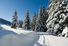 Winter in French alps Royalty Free Stock Images