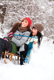 Winter friends Stock Photo