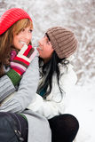 Winter friends Royalty Free Stock Photography