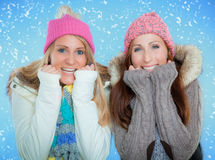 Winter friends Stock Image