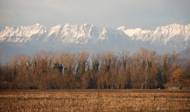 Winter Friuli Royalty Free Stock Photos