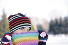 Winter-Frost Stockbild