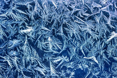 Winter frost patters Royalty Free Stock Photo