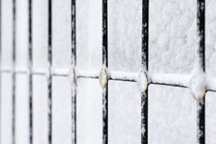 Winter frost window Stock Photography