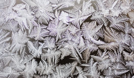 Winter frostwork on window glass Royalty Free Stock Photo