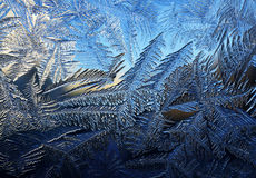 Winter frosty background Stock Photo