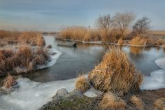 Winter and frosty morning. The picture was taken on a frosty winter morning on the river bank stock photos
