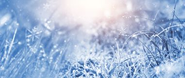 Winter frosty morning. Winter snow background, blue color, snowflakes, sunlight, macro. Frozen grass under the snow, snowflakes and sunlight, rays stock illustration