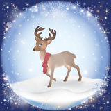 Winter frosty snow background with a Christmas Deer Stock Image