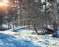 Winter frosty trees and old snowy bridge in the winter park. Winter nature with winter snowy trees Royalty Free Stock Photography