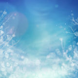 Winter frozen background Stock Photo
