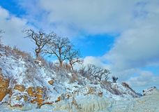 Winter frozen coast with golden rocks and trees stock photo