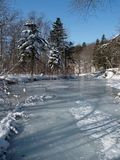 Winter frozen forest stream. Winter forest landscape with frozen stream and coniferous trees and ice snow river Royalty Free Stock Photos