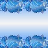Winter frozen glass background. Horizontal border design. Text place. Winter blue frozen glass border background. Cold winter ice lace ornament, hoarfrost Royalty Free Stock Photos