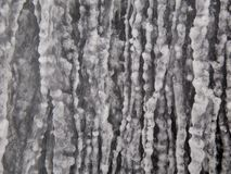 Winter frozen icicle closeup Stock Image
