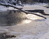 Winter: Frozen Lake and Log Royalty Free Stock Photography