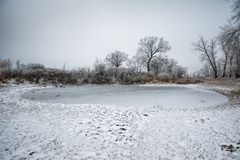 Цinter landscape in Russia Royalty Free Stock Photography
