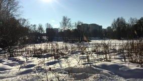Winter frozen river stock video