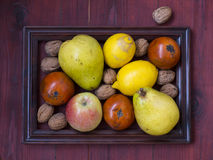 Winter fruits on wooden table. Some fruits and nuts in frame on a wooden background Stock Photo