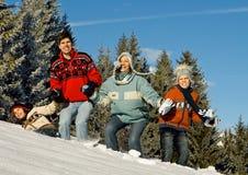 Winter fun 5 Royalty Free Stock Image