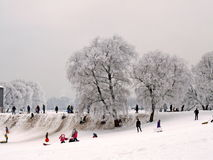 Winter fun in the city park royalty free stock image