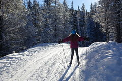 Winter fun. Girl enjoying cross-country skiing in Kananaskis, Alberta, Canada Royalty Free Stock Image
