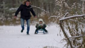Winter fun, snow, family sledding at winter time. Father rolls his happy son on a sledge in the park. Winter warm stock footage