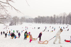 Winter fun, snow, family sledding at winter time. Stock Image