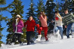 Winter fun with young people group Royalty Free Stock Photo